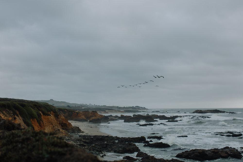 Coast-092216-6.jpg