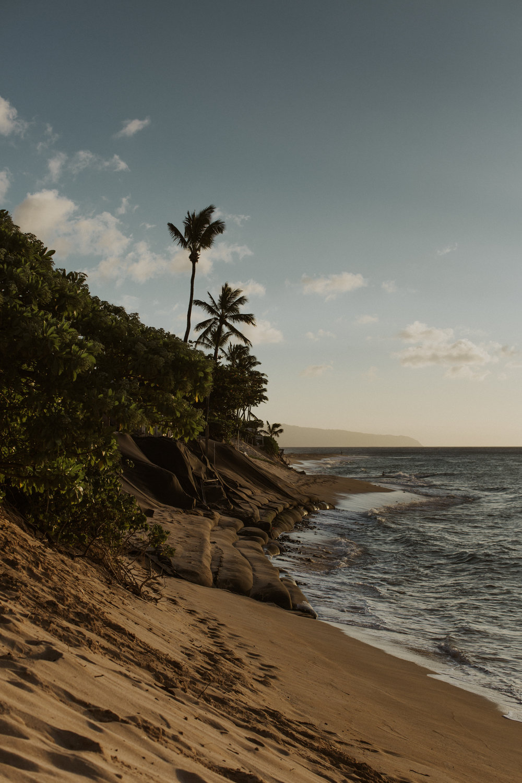 Hawaii-2018-2.jpg