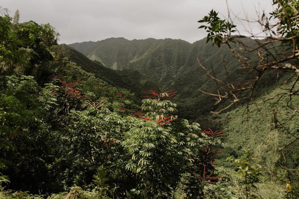 Hawaii-2018-68.jpg