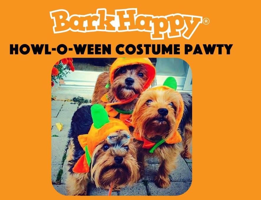 bark happy october.jpg