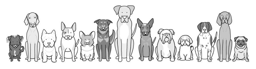 all dog kind.png