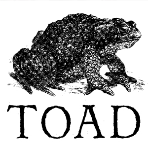 TOAD  Located in Cambridge, MA, Toad is a 70 capacity room.