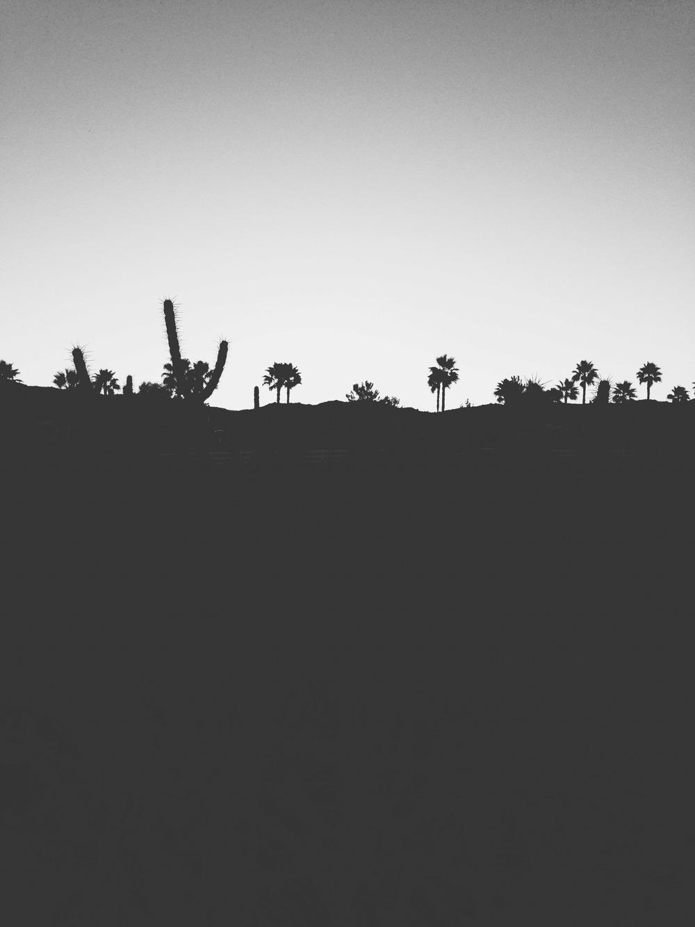 untitled shoot-8188.jpg