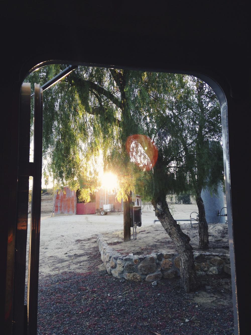 untitled shoot-8115.jpg