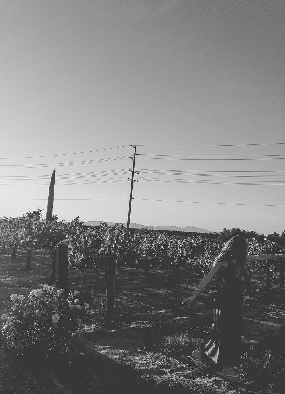 untitled shoot-8156.jpg
