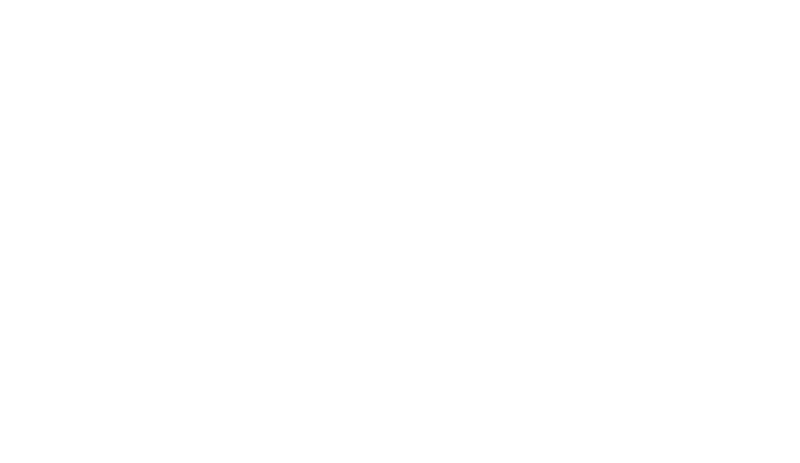The Dishnows