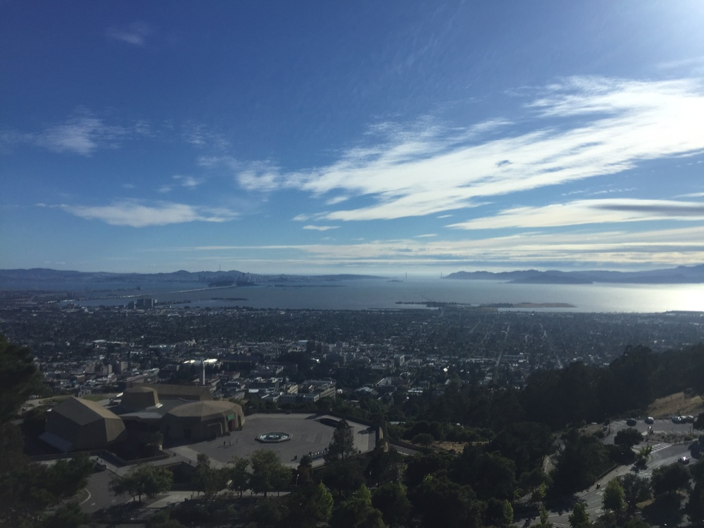 The magical natural beauty of the San Francisco Bay, seen from the UC Berkeley campus.