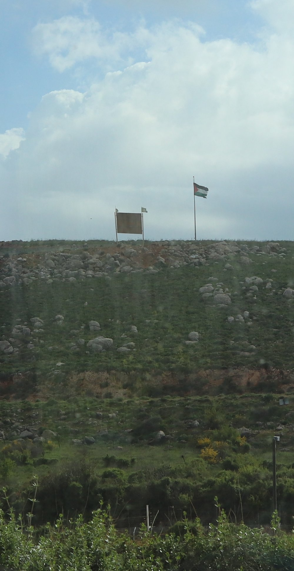 lower quality palestinian flag.jpg