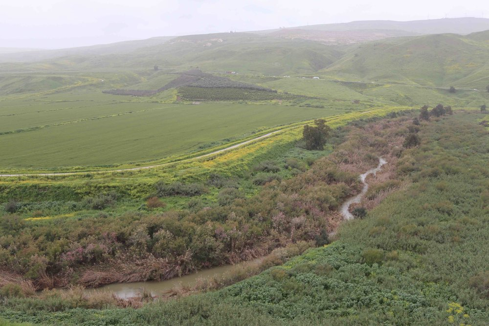 The Jordan River is more creek than river as it runs along the border between Israel and Jordan.