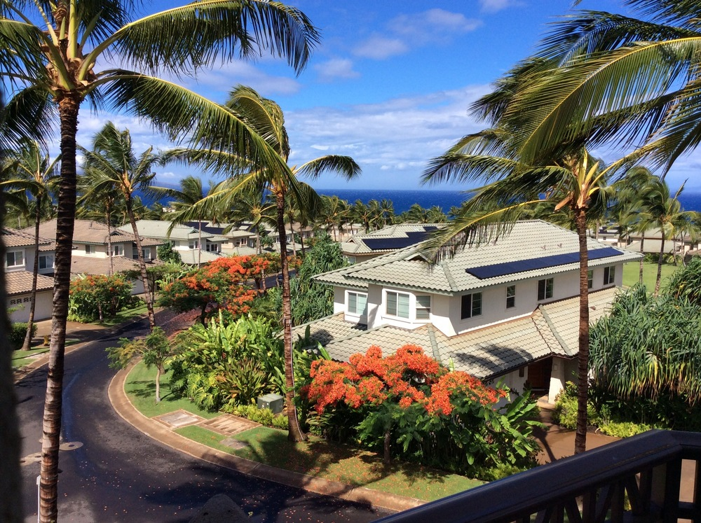 A Room With A View: Kai Malu