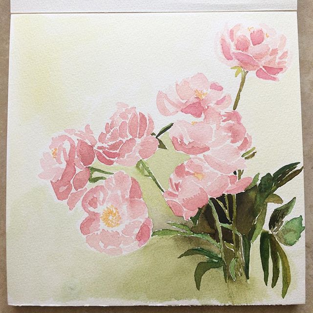 Blush Peonies. In the spring, I declared that I would make bad art as a means to let myself simply make art. (Thank you, Elizabeth Gilbert.) This one definitely falls under that category. This is the first attempt and the peonies were coming along when I decided to play with adding shadow. Watercolor is unforgiving when you go dark too quickly, especially on paper that sheds when you try to blot... so I ruined it, but I still loved the process and I'm going to continue adding layers to see if it grows on me... More peonies to come.