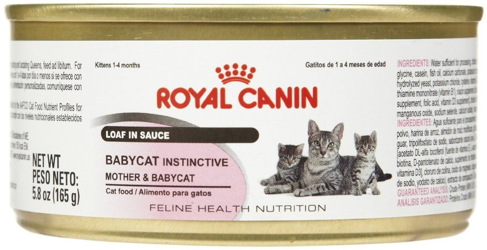 Royal Canin Babycat Loaf in Sauce
