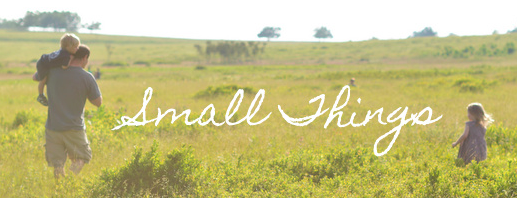 Small Things Blog picture for Giveaway