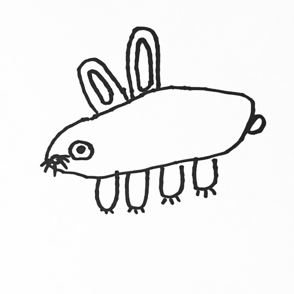 Silas's bunny drawing