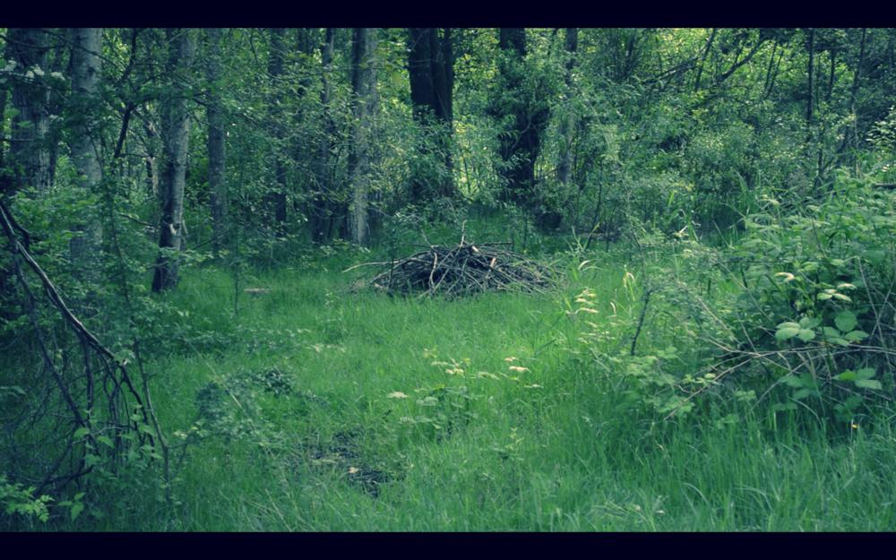 Screen Shot 2014-05-23 at 12.32.14 PM.png