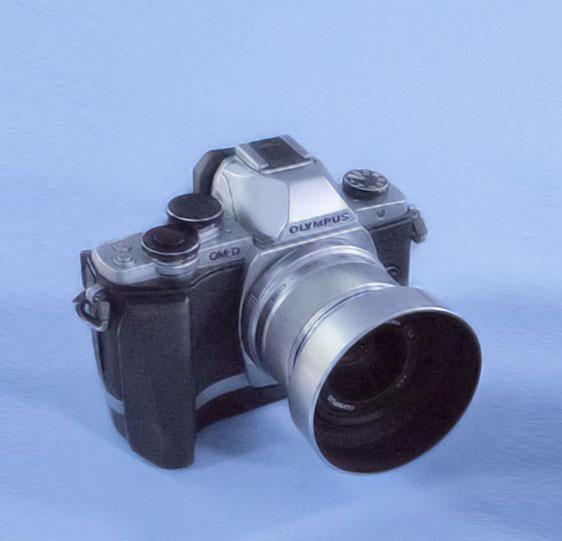 Olympus OM-S E-M10m.ZUIKO 25mm f/1.8