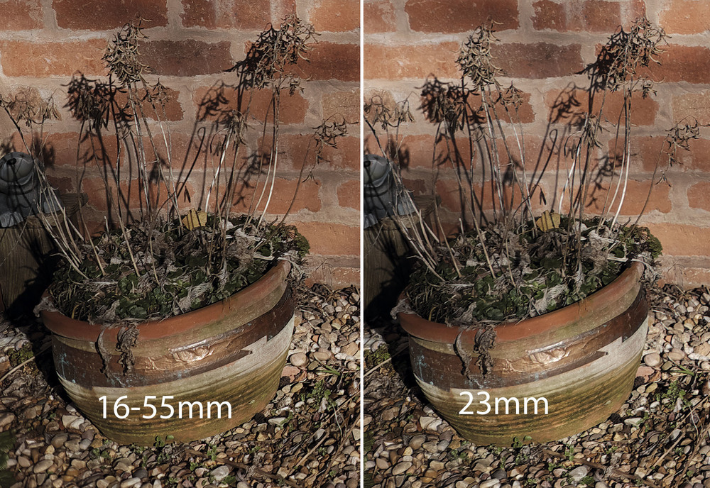 Images shot raw and processed via Raw Converter version 2 - default settings.