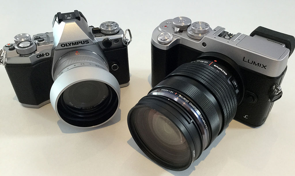 Oly e m10 to panasonic gx8 or gx80 85 micro four thirds for Housse lumix gx80