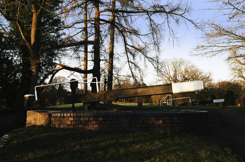 evesham garden centre - 0175.jpg