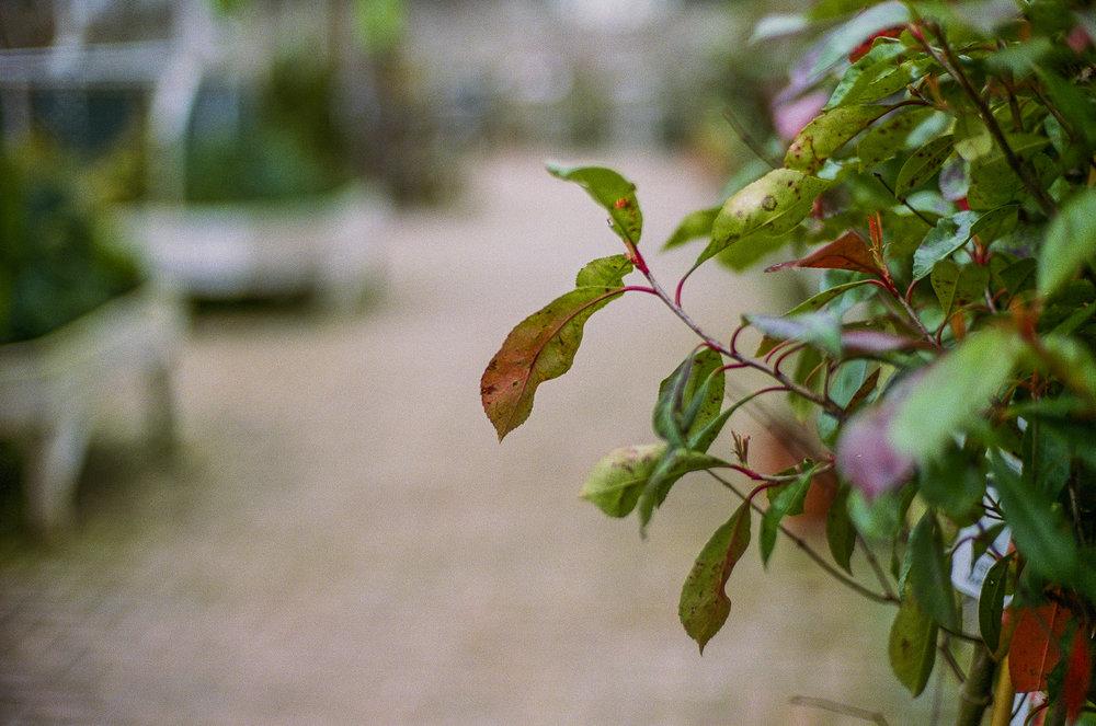 blog-011.jpg