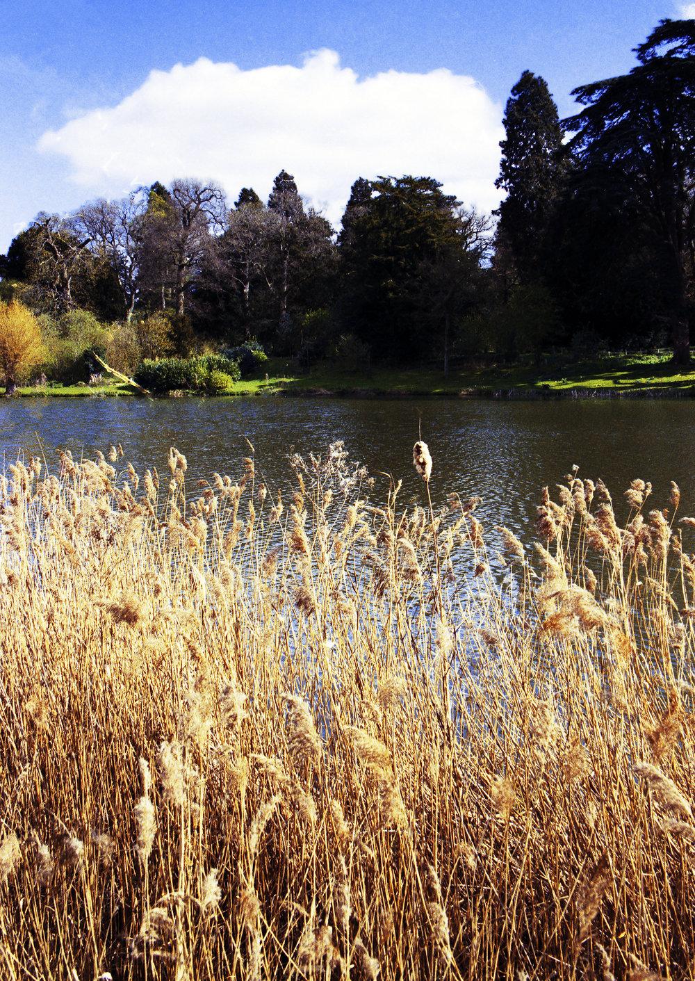river spring - 014.jpg