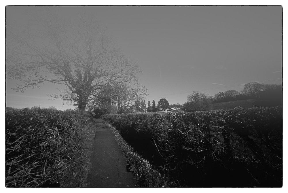 film scans-2670.jpg