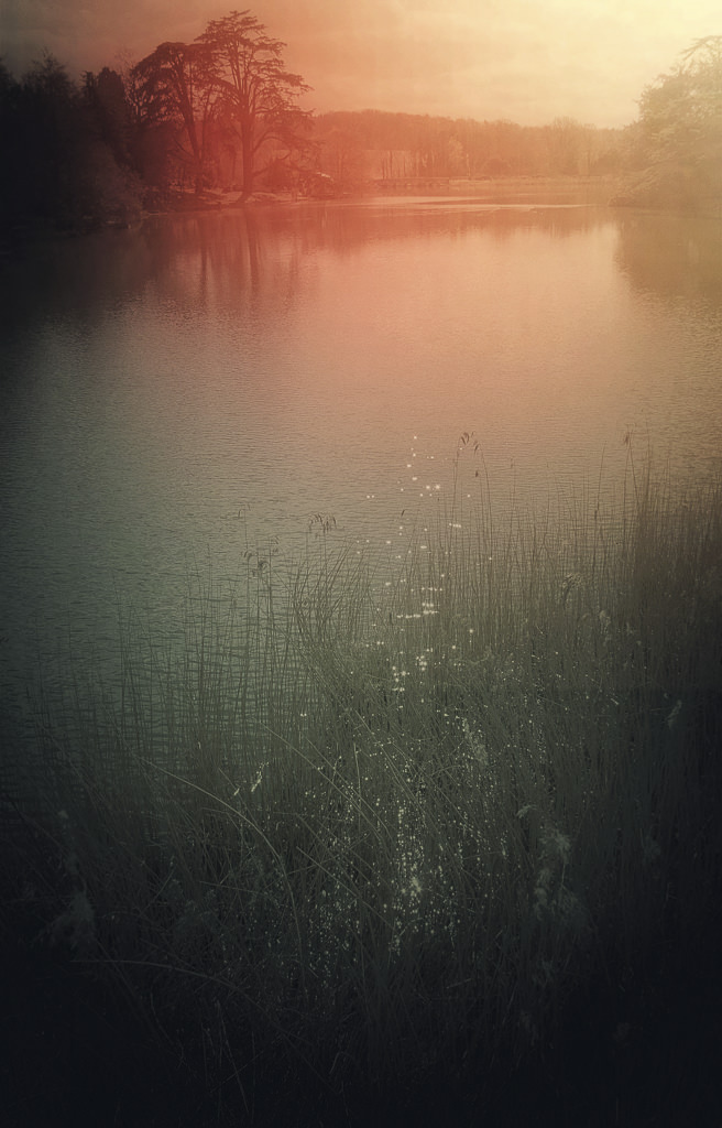 film scans-2692.jpg