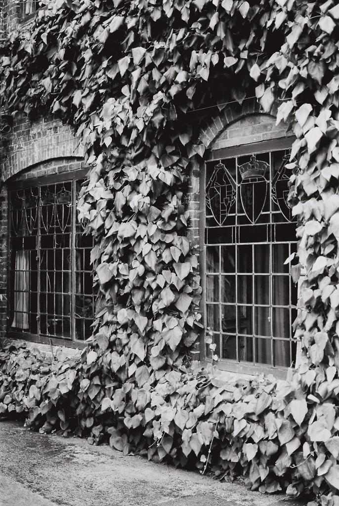 old-window.jpg