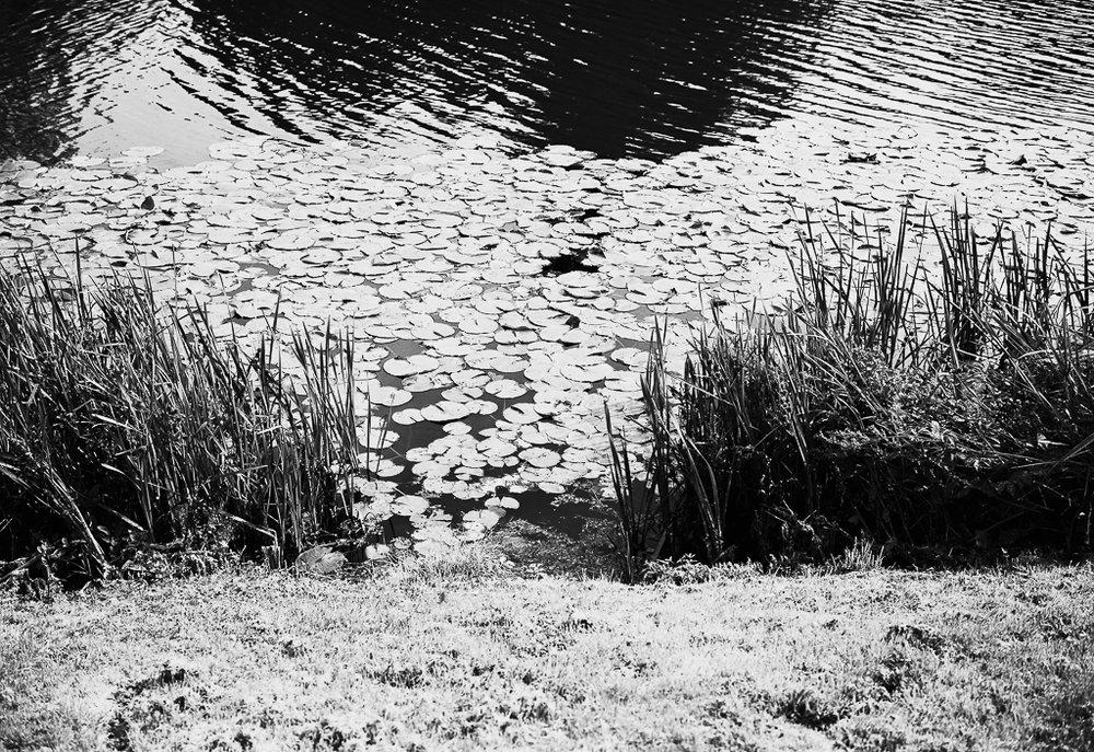 river-bw.jpg