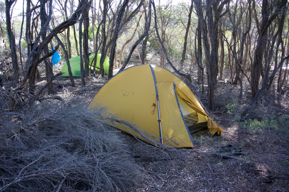 Nestled in the scrub on the south coast of Flinders Island, Tasmania - it's unlikely anyone had camped here before!