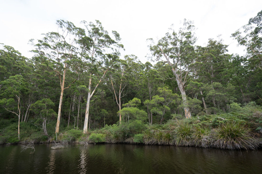 Walpole, Western Australia