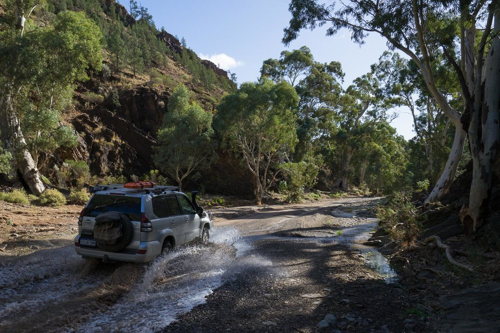 Flinders Ranges National Park, South Australia