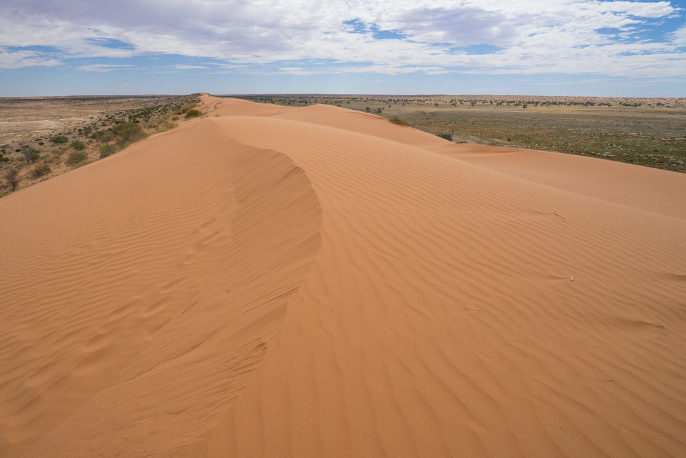 Big Red Sand Dune, Birdsville, Outback Queensland, Australia