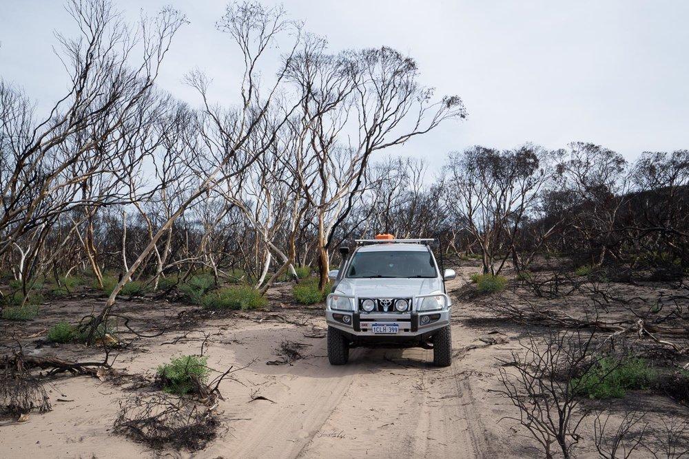 Eyre Bird Observatory to Madura Nullarbor Plain Western Australia