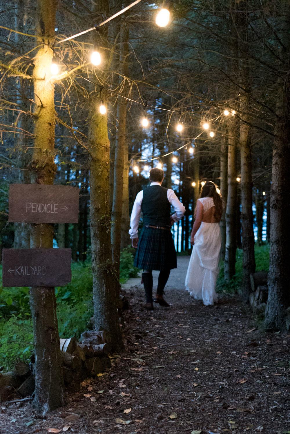 Guardswell Farm - festoon lit woodland walk 02