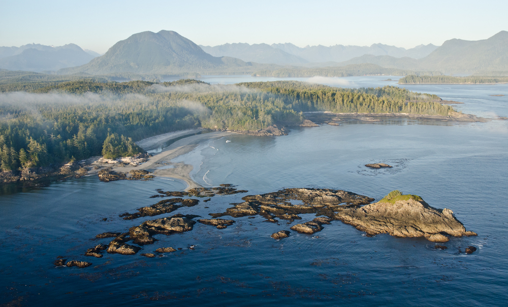 The west coast of Vancouver Island is home to an incredible ecosystem consisting of rainforest covered mountains which drop all the way down to a wave battered shoreline.