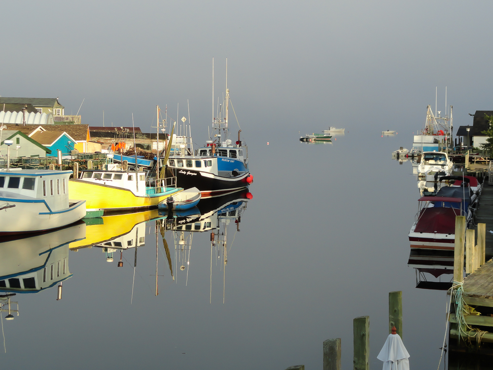 Eastern Passage, Morning Fog