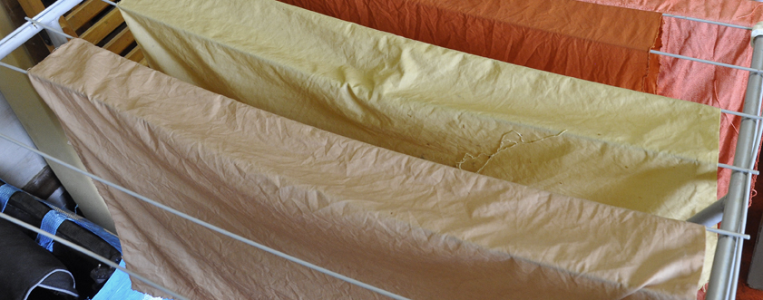 The two pieces of fabric in the front were dyed with rhubarb root, still wet in this picture