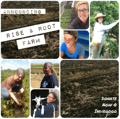 Announcing Rise & Root Farm