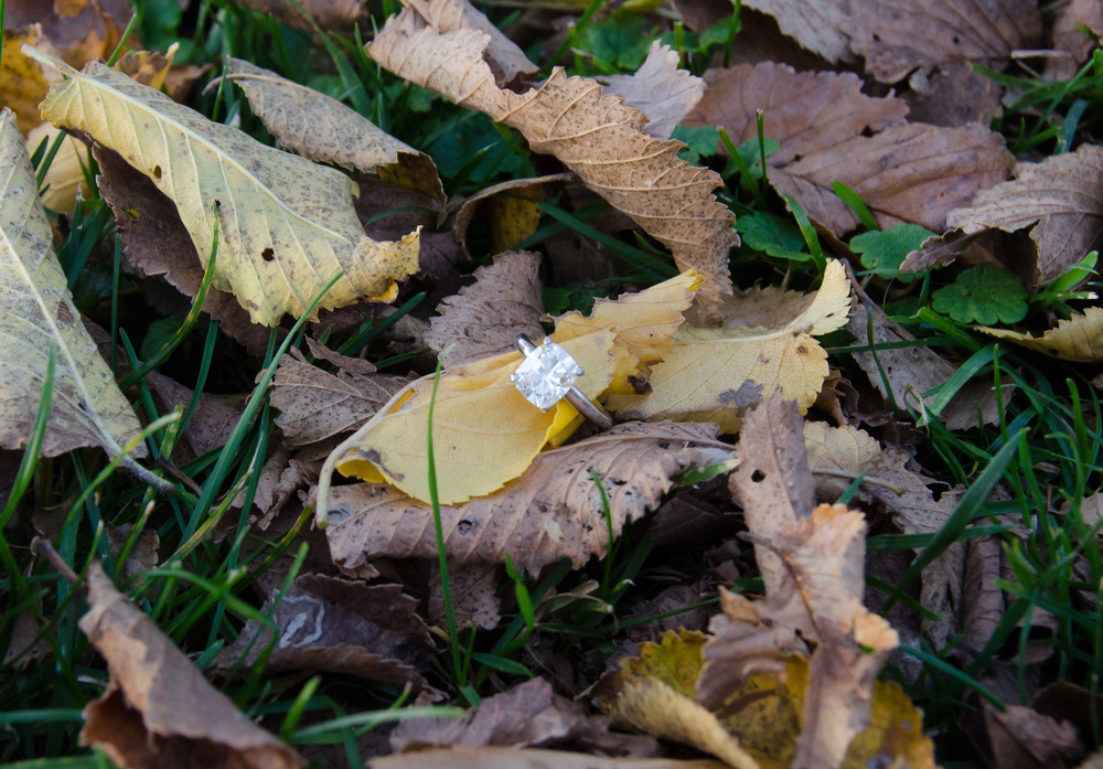 Cushion Cut Engagement Ring in Leaves - NickMcKetaPhoto.com
