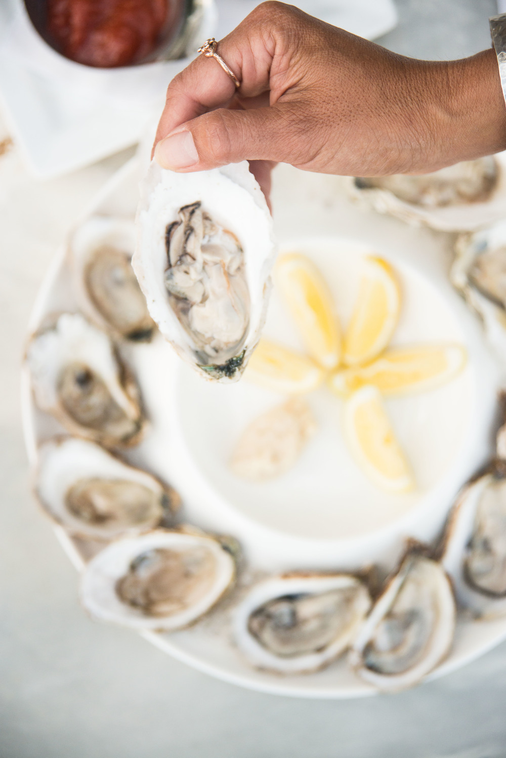 Oysters from Coastal Provisions .... deeeeelicious!