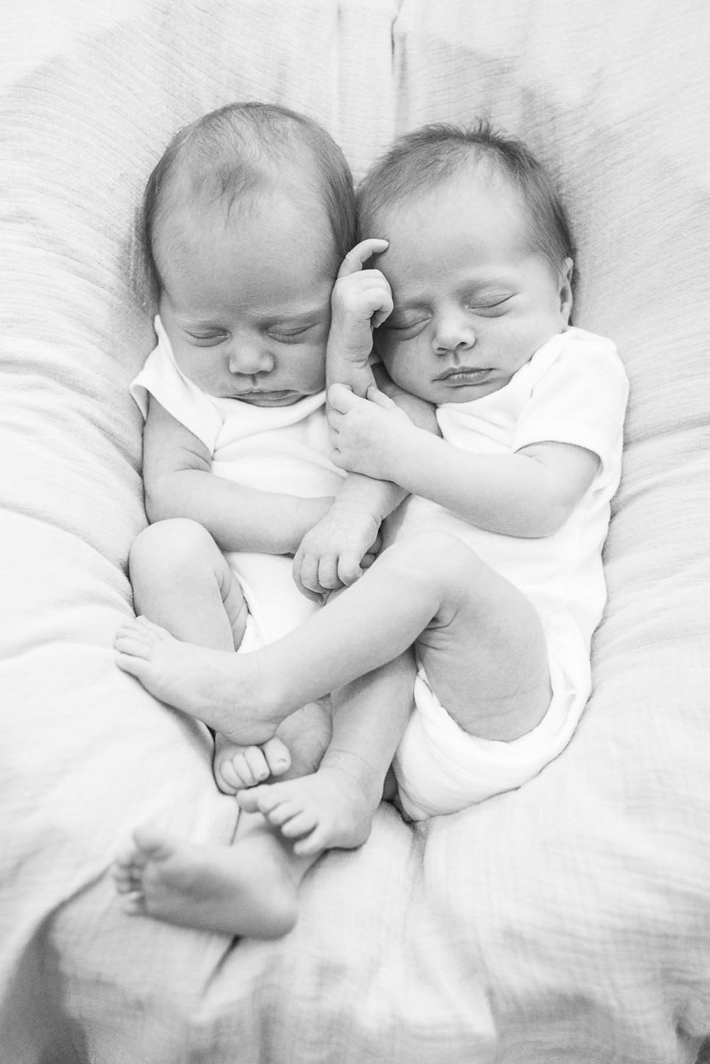 Identical twins from my newborn shoot this week.