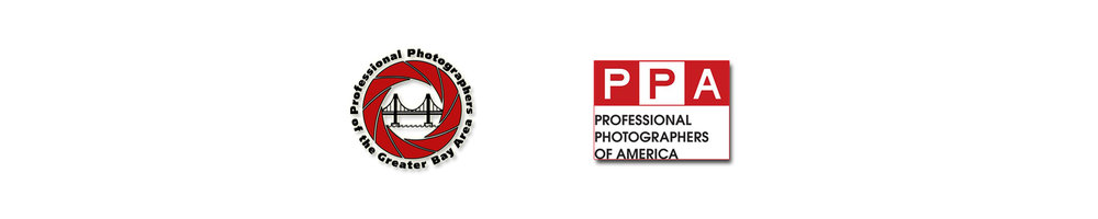PPA + PPGBA Logos b.jpg