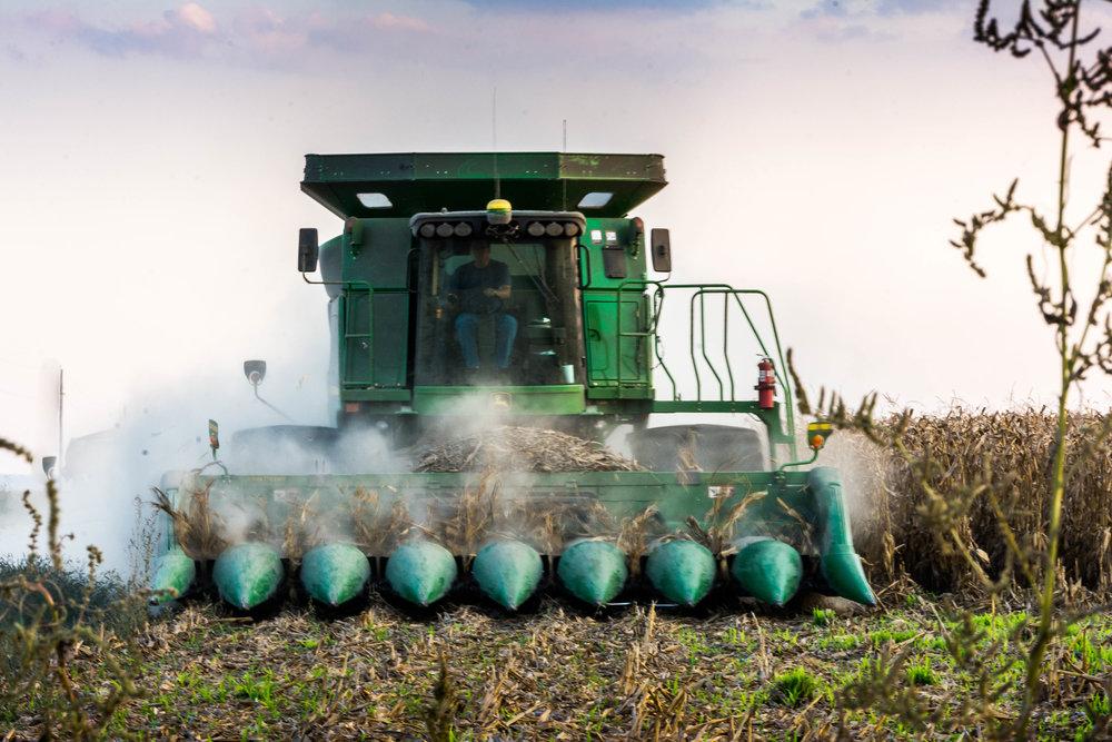 farm-0241.jpg