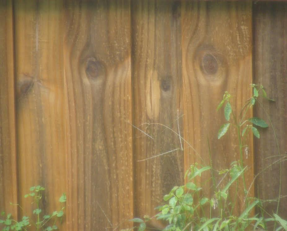 Hair Peace Wood fence.jpg