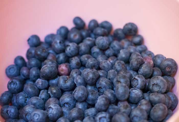 blueberies.jpg