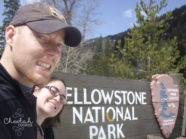 Yellowstone - May 6th 2008