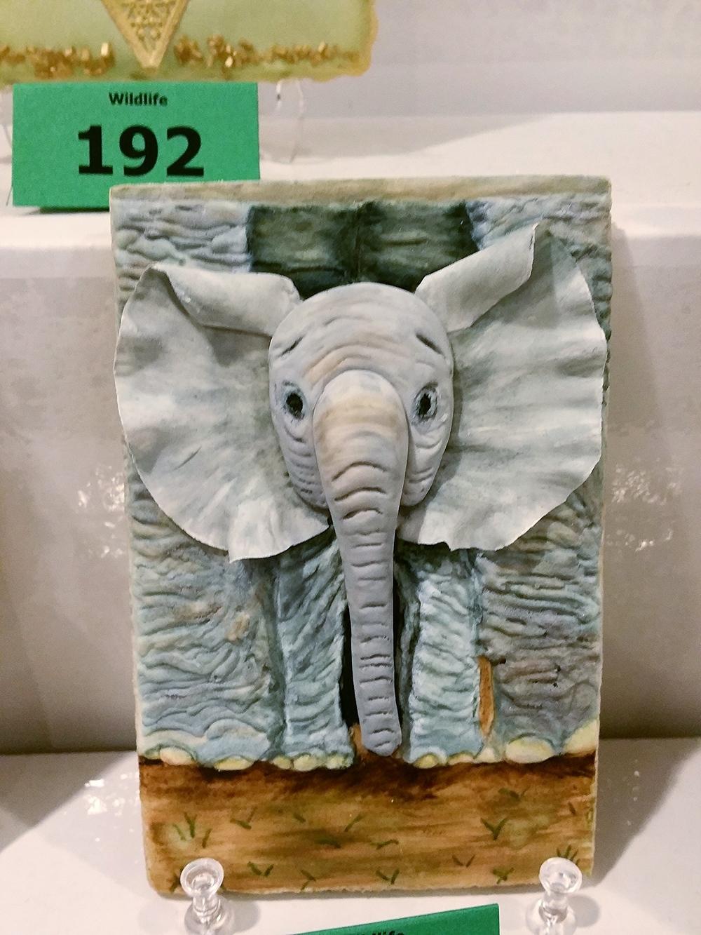 © elephant cookie
