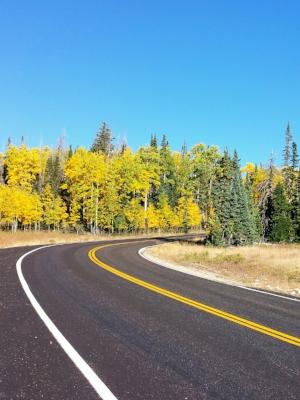 © Road in Cedar Break