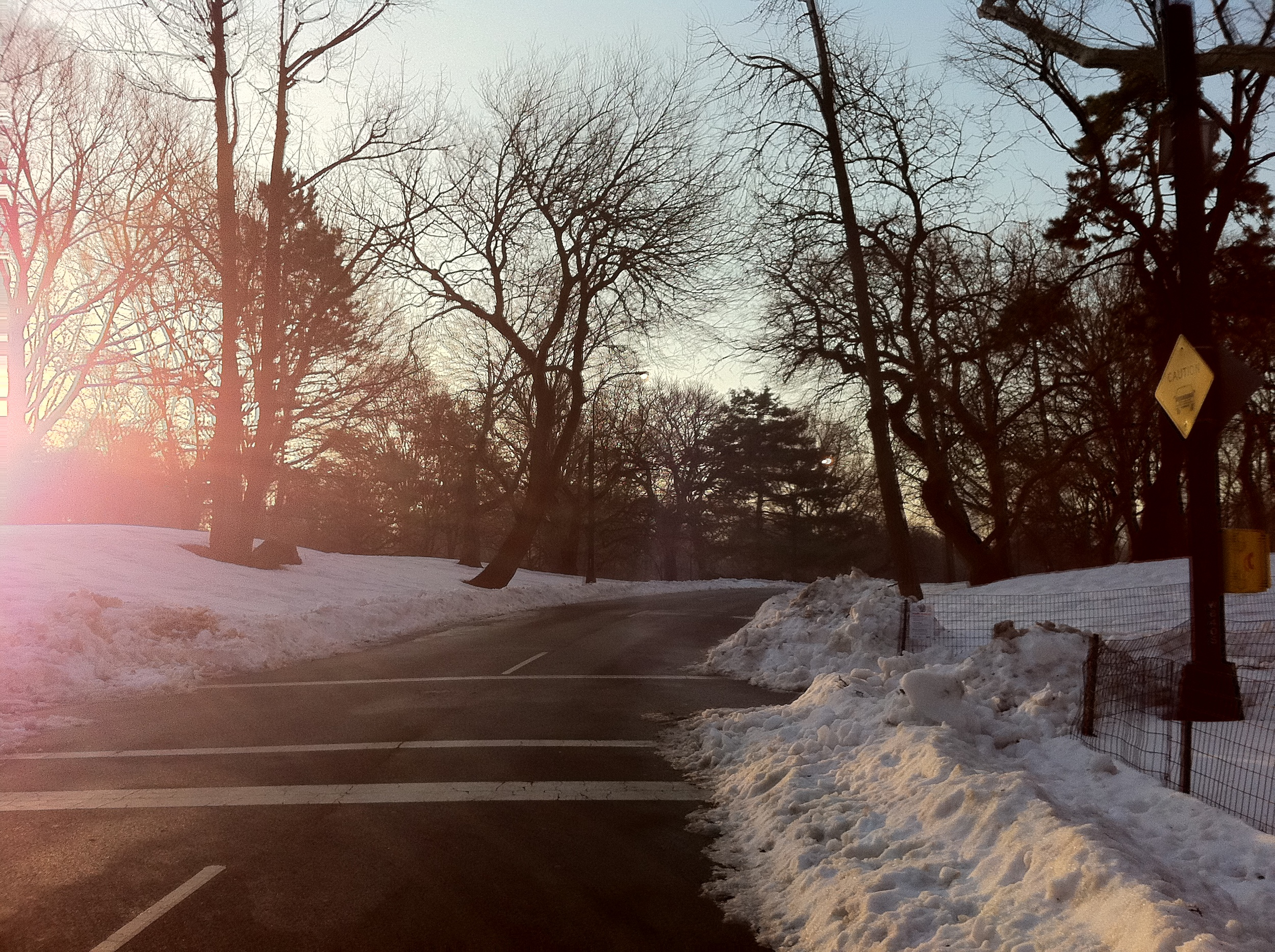 New Year's Day in New York - Central Park